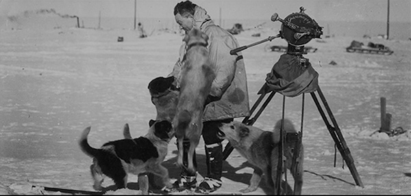 Black and white photo of man interacting with dogs