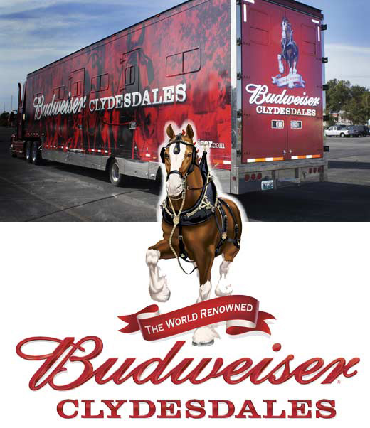 Budweiser beer red truck and logo with a horse