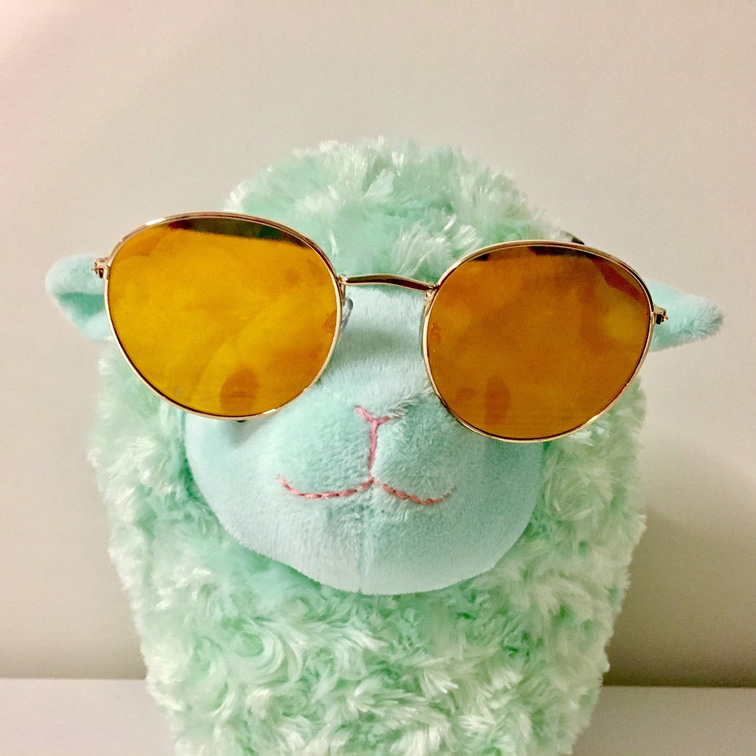 lamb with sunglasses
